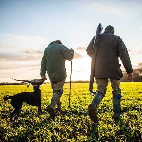 Two people walking with a hunting dog